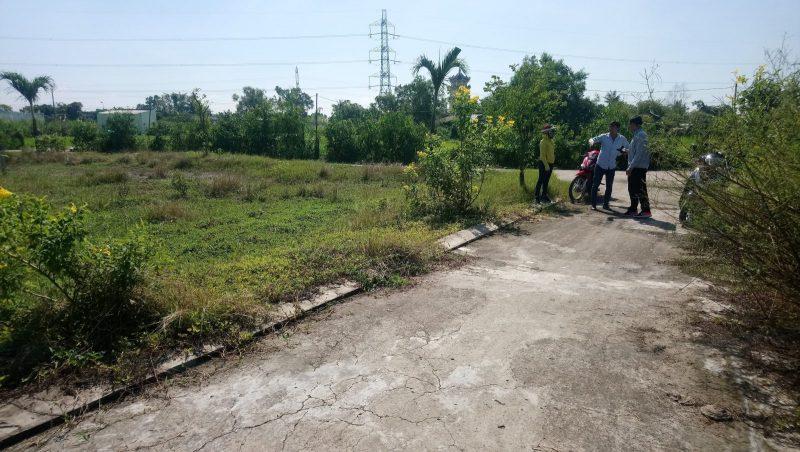 Bán lô đất vườn đường nhựa Phước Lâm, Cần Giuộc dt 500m2