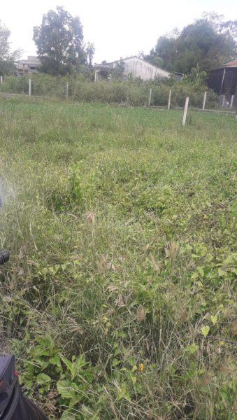 Bán nền đất thổ cư ấp Lộc Hậu, xã Mỹ Lộc, Cần Giuộc, Long An, dt 100m2