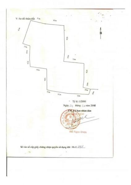 Bán thửa đất diện tích lớn 10,6 hecta tại ấp Sông Lũy, huyện Bắc Bình, tỉnh Bình Thuận